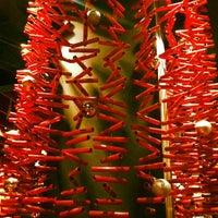 Photo taken at Firecracker by Sean R. on 11/27/2011