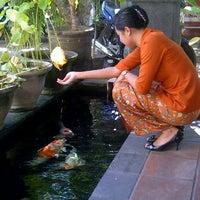 Photo taken at Kolam koi parkiran belakang BPR Lestari by ratih w. on 5/28/2012