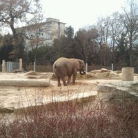 Photo taken at Zoo Dresden by Thomas R. on 1/15/2012