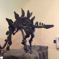 Photo taken at Fernbank Museum of Natural History by Asia V. on 4/8/2012