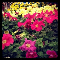 Photo taken at Lowe's Home Improvement by Lauren V. on 4/1/2012