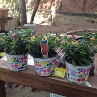 Photo taken at Nuki's Garden by Stefanie L. on 4/19/2012
