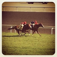 Photo taken at Woodbine Racetrack by Alan F. on 8/5/2012