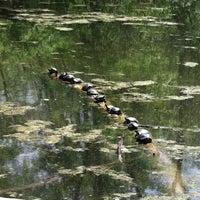 Photo taken at Eagle Creek Park by Ann J. on 4/17/2012
