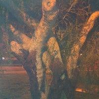 Photo taken at Orizaba Park by Ryan K. on 12/1/2011