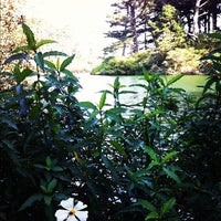 Photo taken at Stow Lake Boat House by djb on 11/27/2011