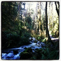 Foto tirada no(a) Forest Park - Wildwood Trail por Tess M. em 3/25/2012