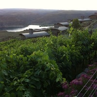 Photo taken at The Tendrils Vineyard Restaurant by Ted E. on 7/7/2011