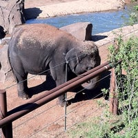 Photo taken at The Oklahoma City Zoo by Frank G. on 9/5/2011