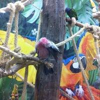 Das Foto wurde bei Kölle Zoo von Gülşah am 8/23/2012 aufgenommen