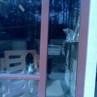Photo taken at Duke Lemur Center by Danielle A. on 2/14/2012
