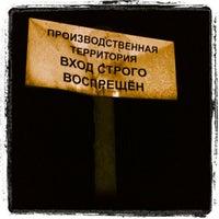 Photo taken at Пасторский ручей (мост) by Nikita N. on 8/18/2012