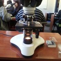 Foto tomada en Sede Tecnología Médica y Fonoaudiología - Universidad de Valparaíso por Alejandra Antonia C. el 6/5/2012