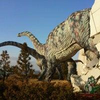Photo taken at 우항리 공룡박물관 by Jun K. on 12/30/2011
