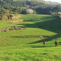 Foto tomada en Parque de la Naturaleza de Cabárceno por Jorge R. el 12/4/2011