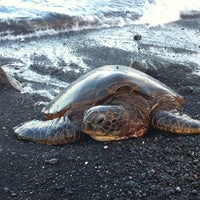 Photo taken at Punalu'u Black Sand Beach by Melissa H. on 5/27/2012