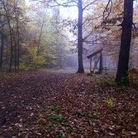 Photo taken at Kunratický les by Milan M. on 1/15/2012