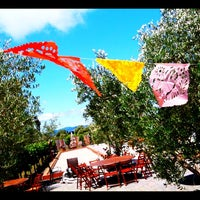 Photo taken at Ceja Vineyards by Adam R. on 7/16/2011