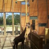 Photo taken at Giraffen by Miepje M. on 8/10/2012