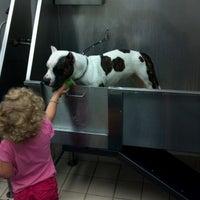 Photo taken at Pet Supplies Plus by Jayna C. on 6/12/2012