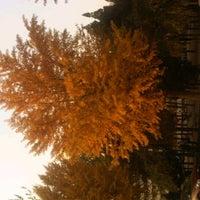 Photo taken at 北京邮电大学图书馆 by Chuan D. on 11/6/2011