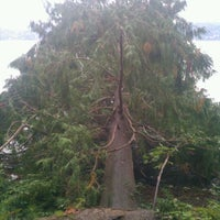 Photo taken at Seward Park by ali m. on 10/14/2011