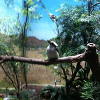 Photo taken at Aquatic Bird House by Caitlin L. on 5/3/2012
