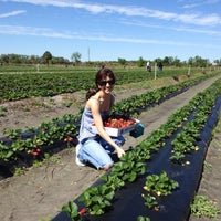 Photo taken at Pappy's Strawberry Patch by Natalie P. on 3/4/2012