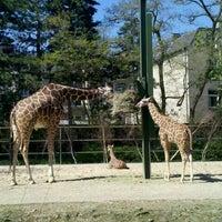 Das Foto wurde bei Kölner Zoo von Sebastian T. am 4/11/2011 aufgenommen