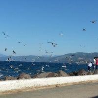 9/1/2012 tarihinde Tugce Deniz O.ziyaretçi tarafından Mudanya Sahili'de çekilen fotoğraf