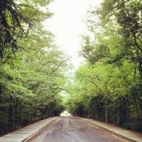 Foto tirada no(a) İTÜ Ağaçlı Yol por Ayça B. em 7/24/2012