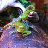 Photo taken at PetSmart by Rob T. on 2/23/2012