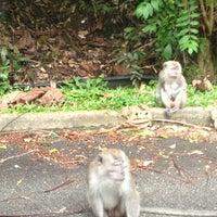 Photo taken at Bukit Panjang Park by Serene H. on 5/6/2012