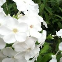 8/25/2012에 Tiph_Tiph님이 Narrows Botanical Garden에서 찍은 사진