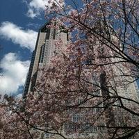 Foto tirada no(a) Shinjuku Chuo Park por Name T. em 4/4/2012