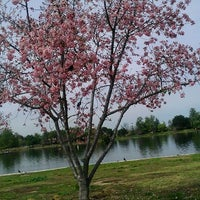 Photo taken at Lake Balboa Park by melody m. on 3/27/2012