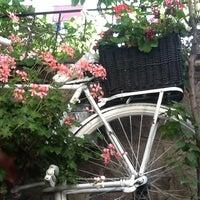 6/10/2012 tarihinde özge k.ziyaretçi tarafından Cafe Botanica'de çekilen fotoğraf
