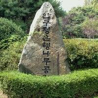 Photo taken at 압구정 은행나무공원 by Ageha(Yeon Kyung) on 9/15/2011