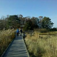 Photo taken at Mass Audubon Wellfleet Bay Wildlife Sanctuary by peter h b. on 11/12/2011