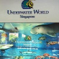 Photo taken at Underwater World And Dolphin Lagoon by Jayce L. on 2/26/2011