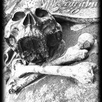 7/24/2011에 es maedsche님이 Johannis-Friedhof에서 찍은 사진