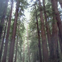 Photo taken at The Redwoods by Danielle R. on 9/2/2012