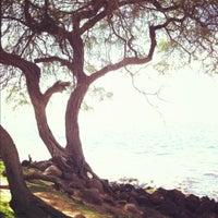 Photo taken at Kamaole Beach Park I by Steve Z. on 12/20/2011