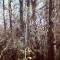 Photo taken at Disc Golf Course by Ian A. on 11/12/2011