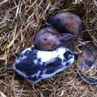 Photo taken at Ballycross Apple Farm by Pat D. on 10/22/2011