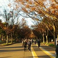 Photo taken at Komazawa Olympic Park by GOGOGO! on 12/11/2011
