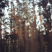 Снимок сделан в Presidio: Presidio Gate пользователем Jess M. 4/5/2012