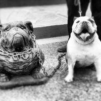Photo taken at The Bulldog Cafe by Jon W. on 8/26/2012