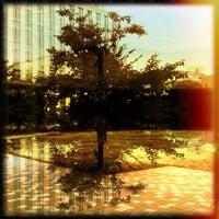 8/7/2012にtakumiが和泉公園で撮った写真