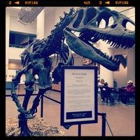 Снимок сделан в San Diego Natural History Museum пользователем Jason D. 2/26/2012